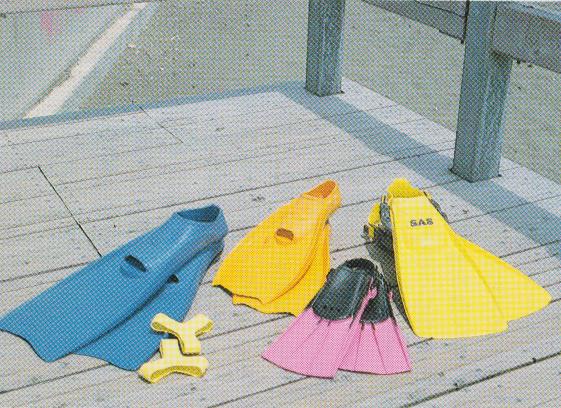 フィン 種類