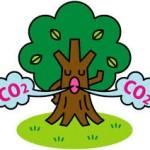 二酸化炭素    炭酸ガス  carbondio