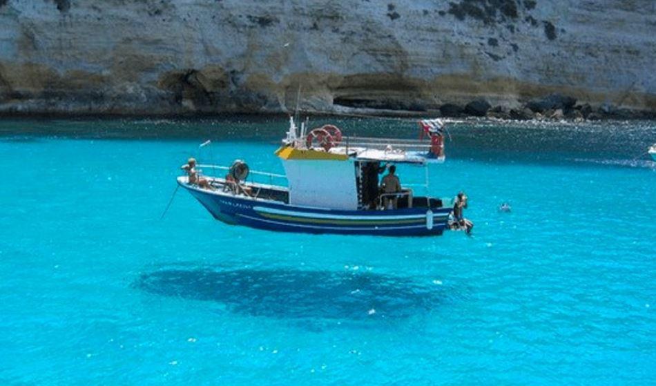 サルガッソ海